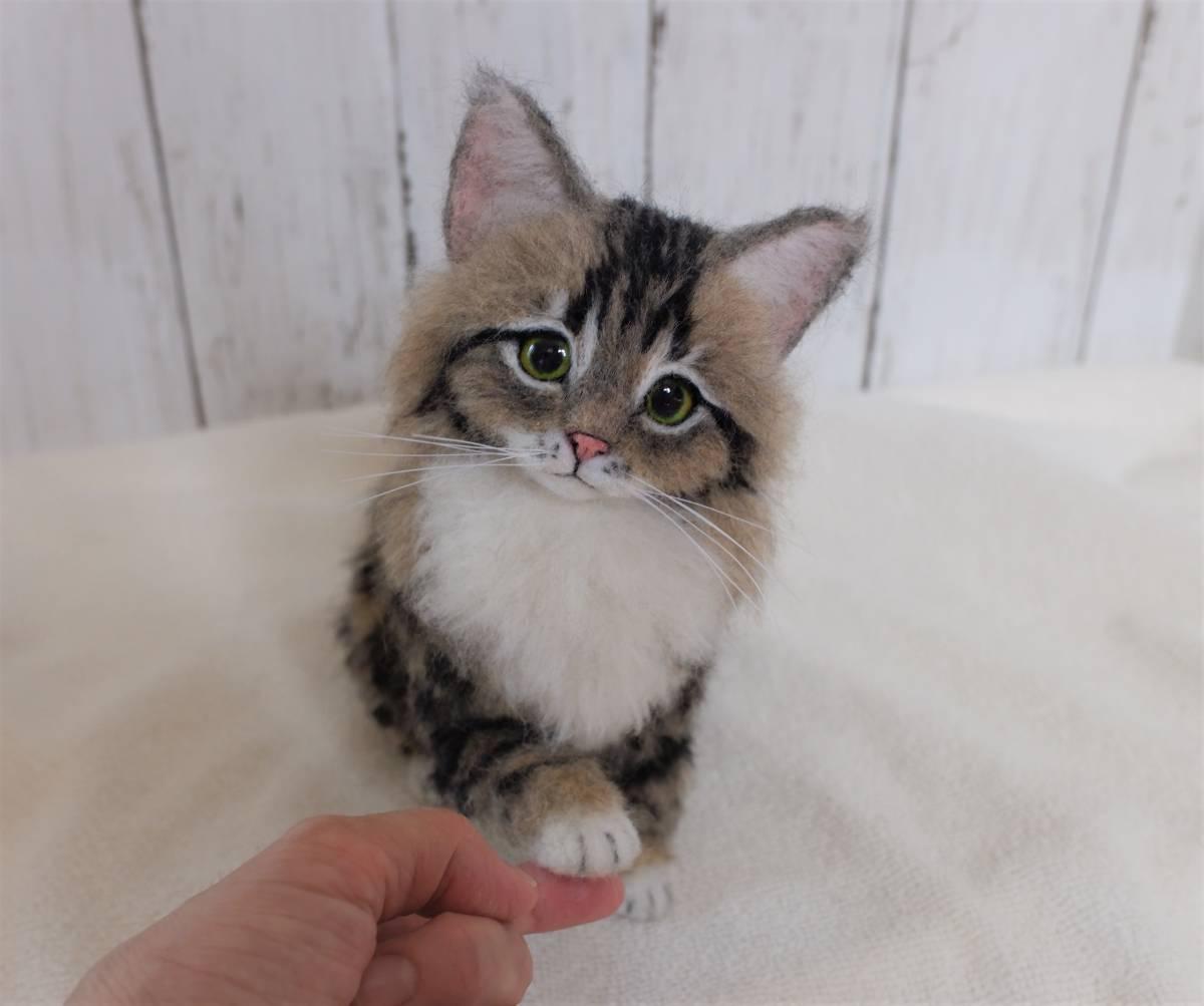 funwari■□■ 羊毛フェルト メインクーン 子猫 おすわり おててでチョン ハンドメイド